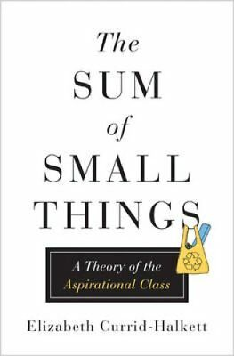 The Sum of Small Things: A Theory of the Aspirational Class by Elizabeth...