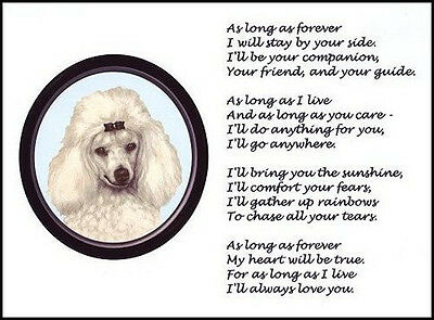 "Beautiful POODLE print ""AS LONG AS FOREVER.."" art dog puppy poem NEW!"