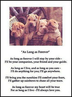 "Beautiful SHAR-PEI print ""AS LONG AS FOREVER.."" art poem dog puppy NEW!"