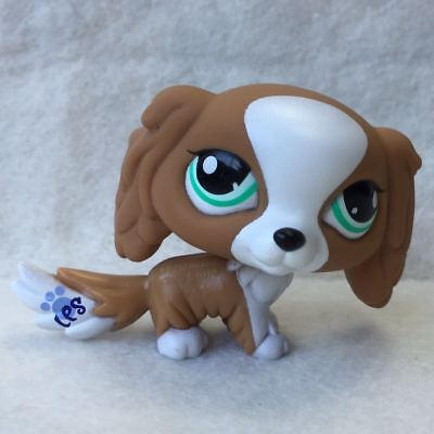 Littlest Pet Shop  LPS Toy #1825 Brown & White Puppy King Charles Spaniel Dog