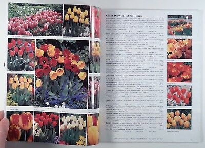 2000 BEAUTY FROM BULBS John Scheepers bulb catalog GARDENING daffodils LILIES