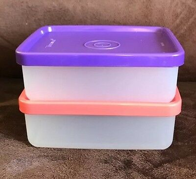 Tupperware New Snack On The Go Containers Set Of 2