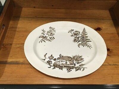 "Vintage Large J. F. Wileman Brown Transferware Oval Platter 16"" x 13"""