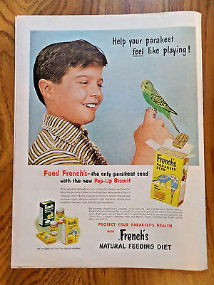 1956 French's Parakeet Bird Seed Ad
