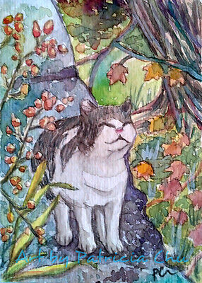 """ACEO LE Art Card Print 2.5""""x3.5"""" Cat Walking In The Woods Animal Art by Patricia"""