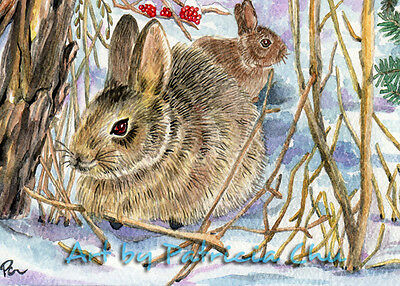 "ACEO LE Art Card Print 2.5""x3.5"" "" Bunnies In Winter Snow "" Art by Patricia"