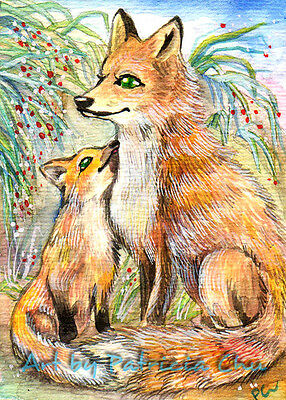 """ACEO LE Art Card Print 2.5x3.5/"""" Fox Family In The Woods Animal Art by Patricia"""