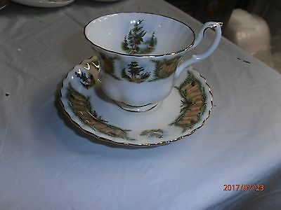 Beautiful Vintage Cup and Saucer, Royal Albert England, Knotty Pine