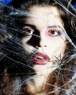 Arachnophobia - Spiders Phobia Cure: Guided Hypnosis Audio Cd, New