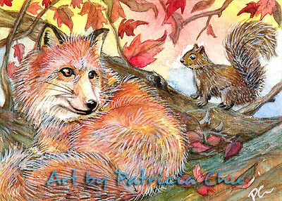 """ACEO LE Art Card Print 2.5x3.5/"""" /"""" Join Me For A Nap /"""" Animal Art by Patricia"""