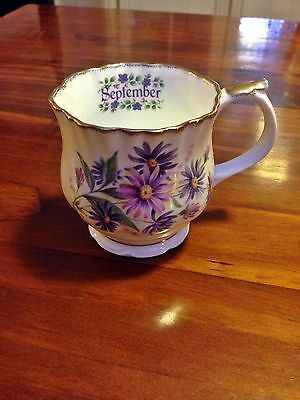 Elizabethan Staffordshire Hand Decorated Fine Bone China 'September' Cup