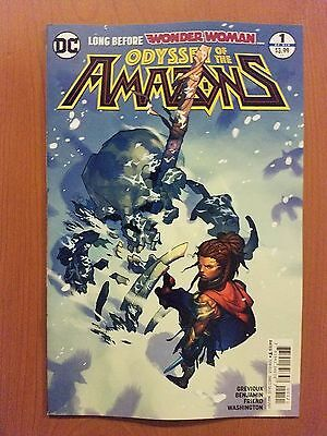 Odyssey of the Amazons # 1 DC Universe Rebirth (1st Print) Variant