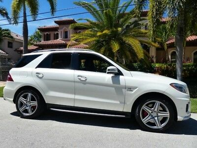 2014 Mercedes-Benz M-Class  2014 AMG ML63 ONE OWNER WITH FULL SERVICE PERFORMANCE PACK DIAMOND WHITE DESIGNO