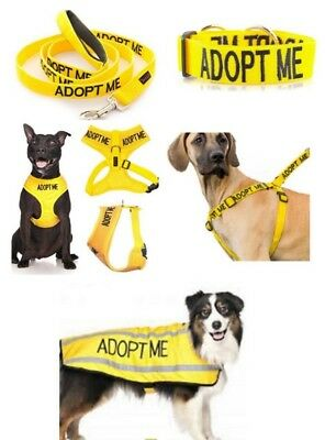Colour Coded Dog Warning Awareness - ADOPT ME Harnesses Leads Collars Coats