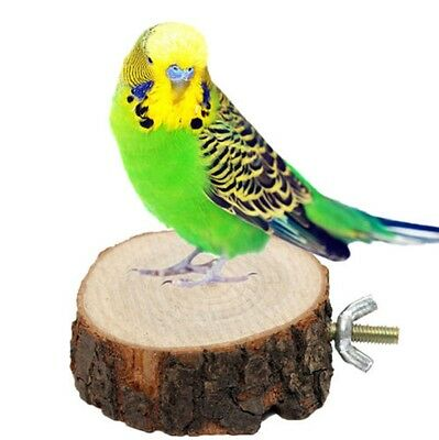 5-7cm Wooden Parrot Bird Cage Stand Platform Perches Coin Pet Toy Budgie Hamster