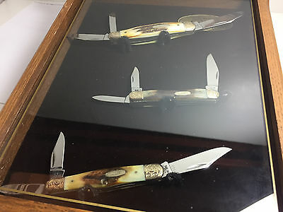 """Case Xx 5308, 5380 & 5383 Ss Stag Whittlers """"mint""""  1983 Set W/ Display Case"""