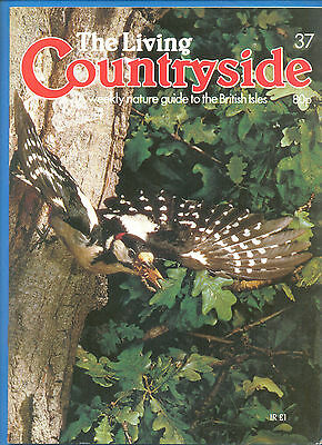 THE LIVING COUNTRYSIDE.A WEEKLY NATURE GUIDE TO THE BRITISH ISLES.No.37.1984