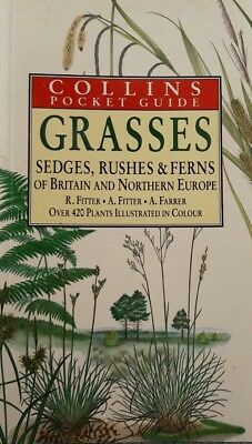 GRASSES, SEDGES, RUSHES & FERNS OF BRITAIN AND NORTHERN EUROPE - paperback