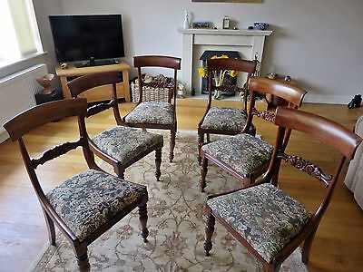 Set of Six Gorgeous Antique William IV Mahogany Dining Chairs c.1830s.