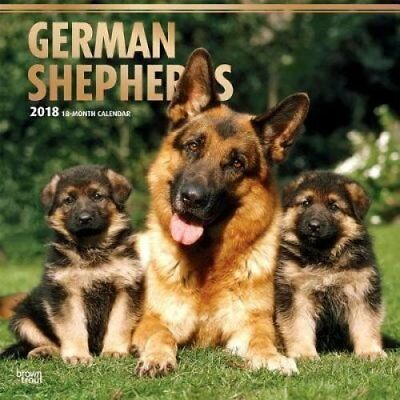 2018 German Shepherds Wall Calendar by Inc Browntrout Publishers 9781465087737