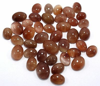 Wholesale Lot Natural Copper Rutilated Gemstone Calibrated Size12x10-18x13MM AA9