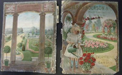 1902 Peter Henderson*seed Catalog Front Back Covers Only*pan American Exposition