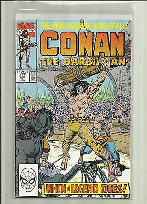 CONAN: THE BARBARIAN # 238 . Marvel  Comics .1990 .