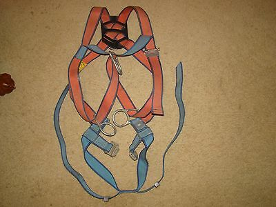 Rose full body safety harness