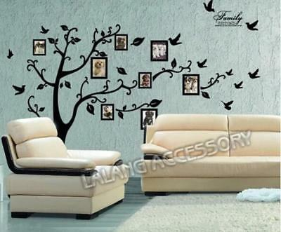 Family Tree Bird Photo Frame Wall Quotes Wall Stickers Wall Art Wall Decals 6A
