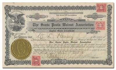 Santa Paula Walnut Association Stock Certificate (California)