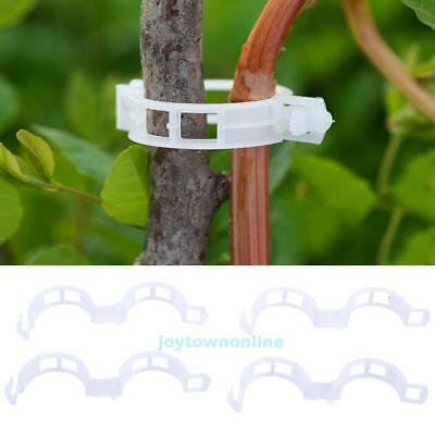 Tomato Veggie Vegetable Garden Plant Support Clips for Trellis Twine Greenhouse