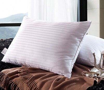 1 pc 100/% Silk Filled Pillow With White Stripe Cotton Shell Standard Queen King