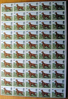 50 schicke IRISH SETTER - Briefmarken