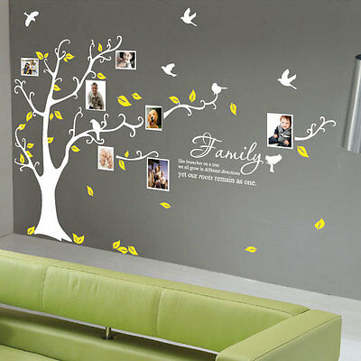 Family Tree Bird Photo Frame Wall Quotes Wall Stickers Wall Art Home Wall Decals