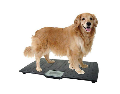 Digital Scale Vet Pet Digital Precision Stand On Luggage Large Airline 225LB