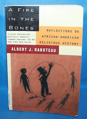 A Fire in the Bones by Albert J. Raboteau (1996, Paperback)