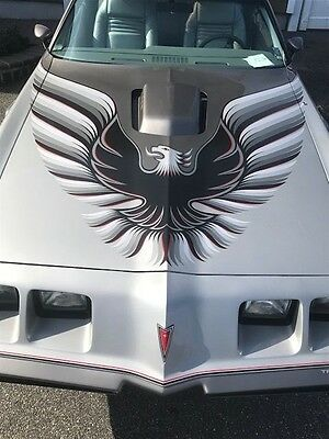 1979 Pontiac Trans Am 10th Anniversary 1979 Pontiac Trans am 10th Anniversary