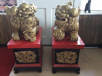 """FINE ANTIQUE HAND CARVED CHINESE FOO LIONS DOGS 38"""" with stands"""