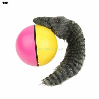 Pet Products Beaver Weasel Rolling Motor Ball Pet Cat Dog Kids Chaser Moving Toy