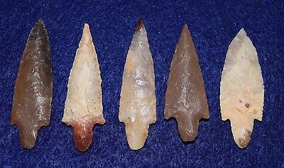 5 nice lance stemmed Sahara Neolithic projectile points, good size