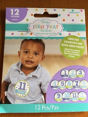 Baby Boy Month Stickers (12ct)