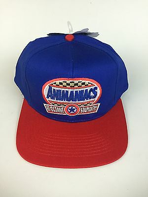 NWT Vintage Embroidered Animaniacs Snapback Hat Blue Red Head Start Sportswear