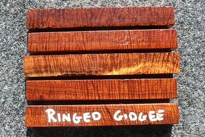 Pack of 5 Ringed Gidgee  Pen Blanks