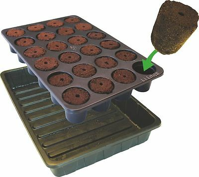 ROOTING SPONGE TRAY 24 Cell Plugs ROOTIT Propagator Cloning Propagation ROOT!T