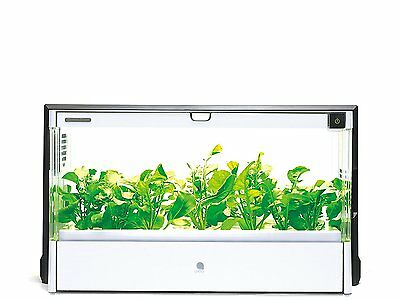 F/S NEW U-ING Green Farm Hydroponic Grow Box UH-A01E1 from JAPAN EMS Tracking