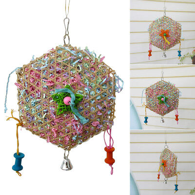 Pet Bird Parrot Swing Cage Toy Foraging Toys Chew Bites for Parakeet Cockatiel