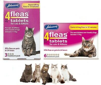 Johnson's 4 fleas 4 Flea Tablets Cat Kitten also available Flea Combs