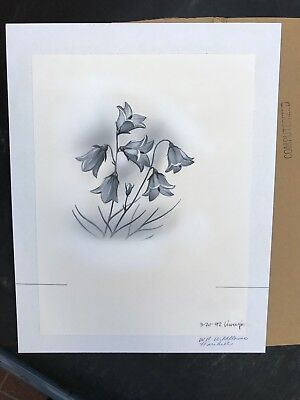 Production Artwork - Harebell  Wildflowers
