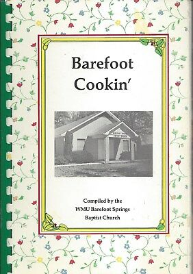 Pelahatchie Ms 1987 Wmu Barefoot Springs Baptist Church Cook Book  *mississippi