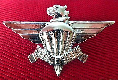 3 PARACHUTE BATTALION SOUTH AFRICA ARMY AIRBORNE PARA chrome metal BERET BADGE